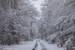 Trois balades pour profiter de la neige en famille ce week-end à Martelange