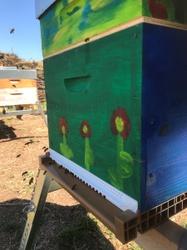 Les abeilles ont pris place dans les ruches communales